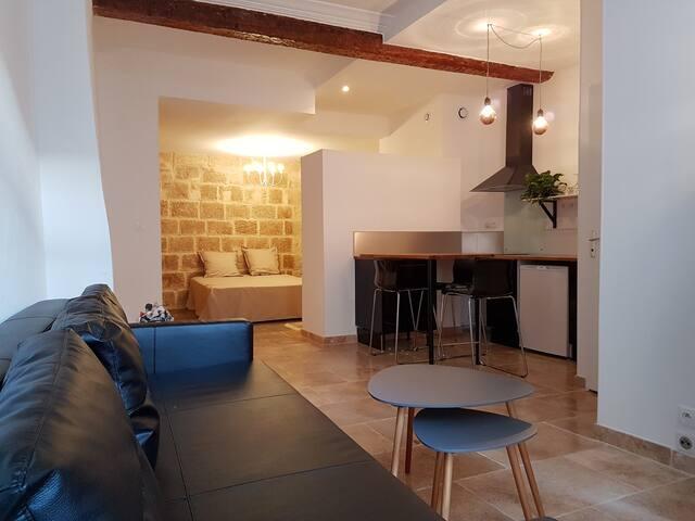 Loft rénové  en plein centre de Montpellier - Montpellier - Loft