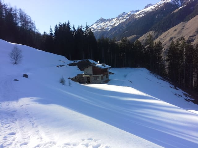 Chalet nel bosco - Grosotto - House