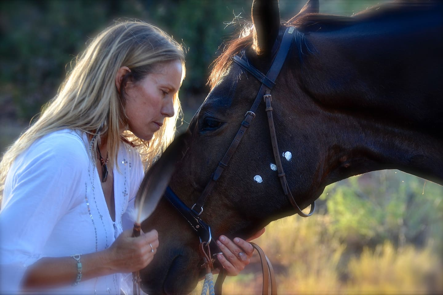 Horse Medicine, Meditation, ceremony, sound healing, hiking, private jeep journeys, horse riding and a cozy apartment with a view of Sedona's magnificent high mountain forestry and more....a truly special Sedona experience...see why we are the most frequently visited Airbnb in Sedona for 5 years running!