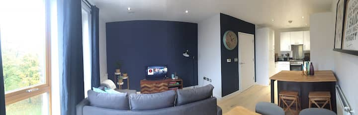 One bedroom fully furnished in Limehouse