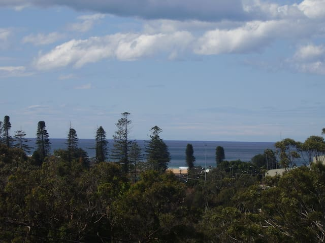 Sand, sea, serenity.A special place - Avoca Beach - Apartment