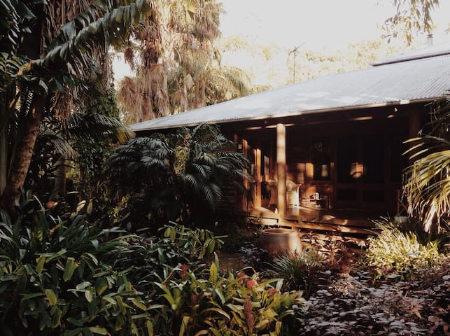 Tropical Tree House Retreat - Mullumbimby - Bed & Breakfast