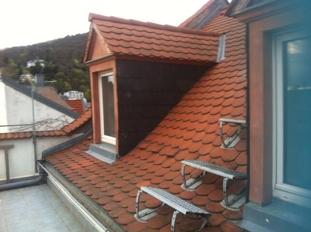 Catsitting: Beautiful Roof Apt for Cat lovers Only - Heidelberg - Departamento