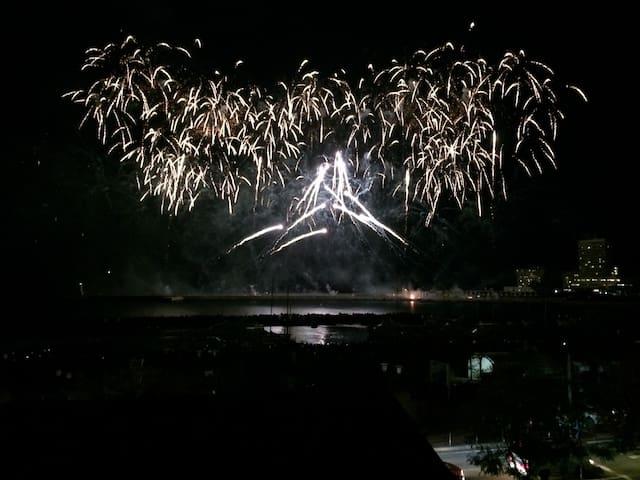 Mt.Fuji by fireworks in Atami