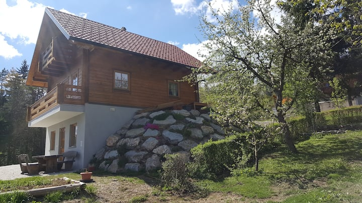 Bloke Lake Lodge - enjoy holidays near Lake Volčje