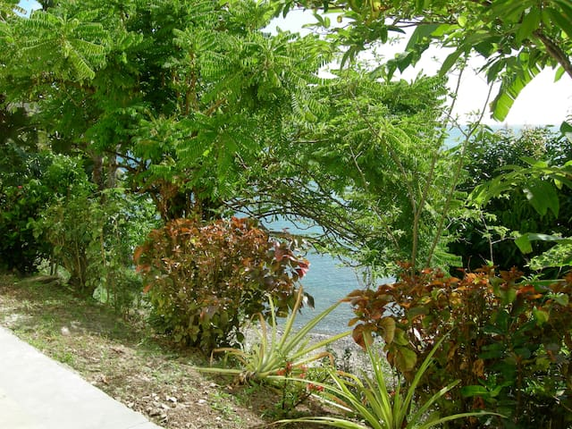 STUDIO FOR FOUR  - Castries City - Bed & Breakfast
