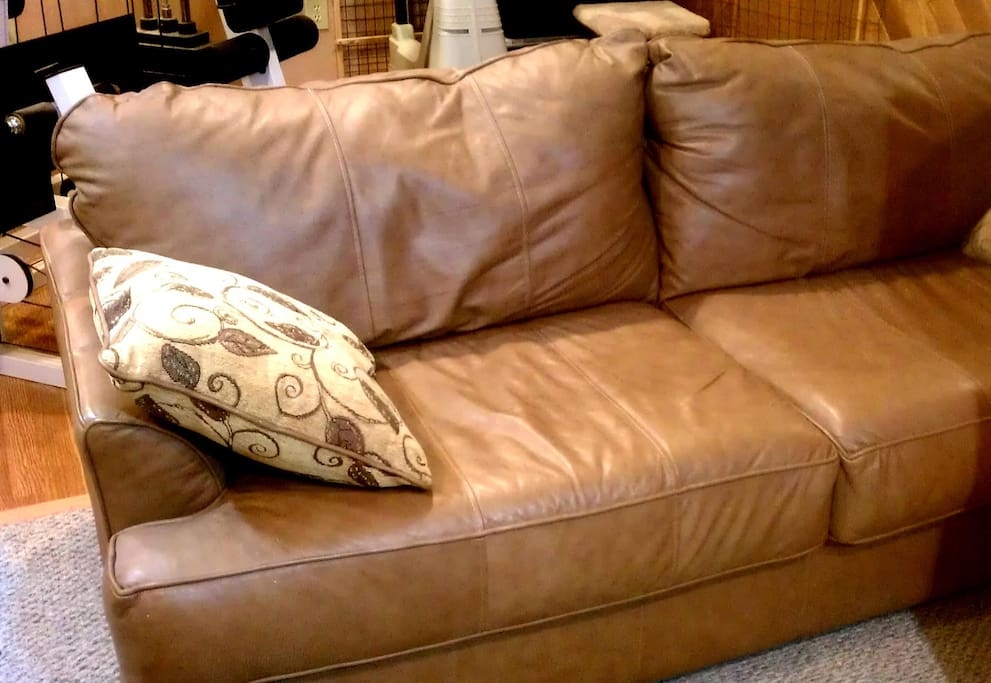 Lower Level Leather Furniture contains your Queen Hide-a-Bed.
