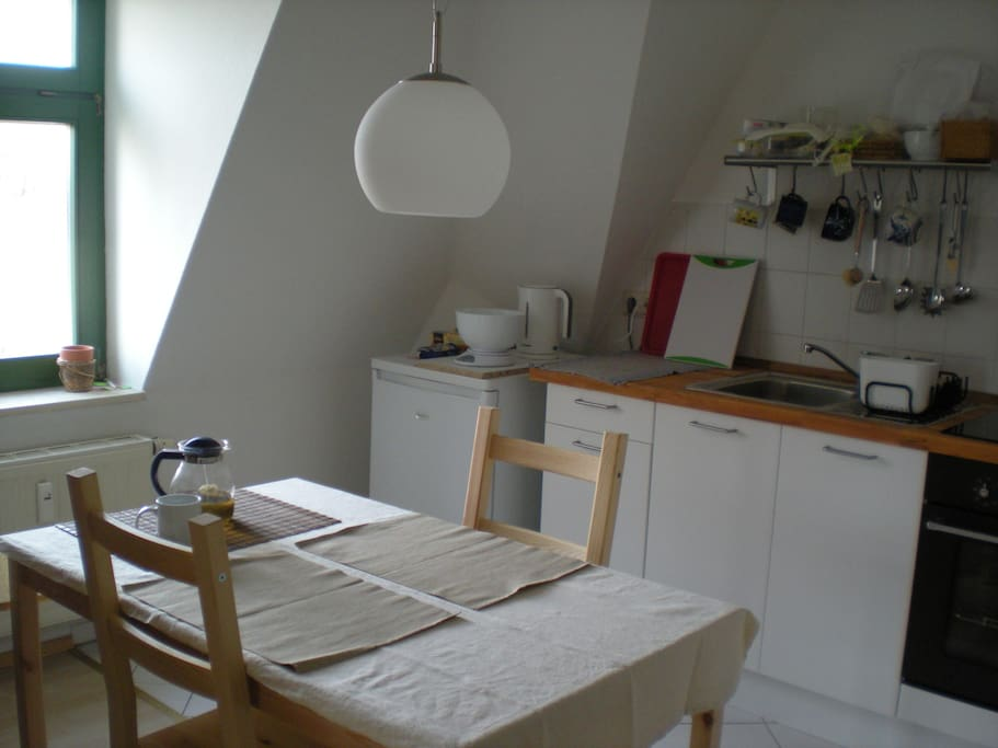 Cosy one room apartment in Striesen Apartments for Rent