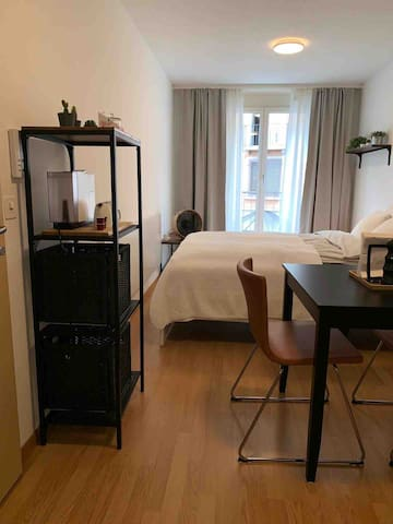 Cozy Studio (105) next to Zurich HB main Station!