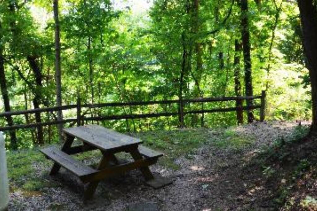 Picnic Area beside cabin