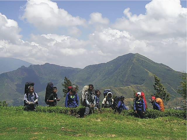 view gunung sindoro - temanggung - House
