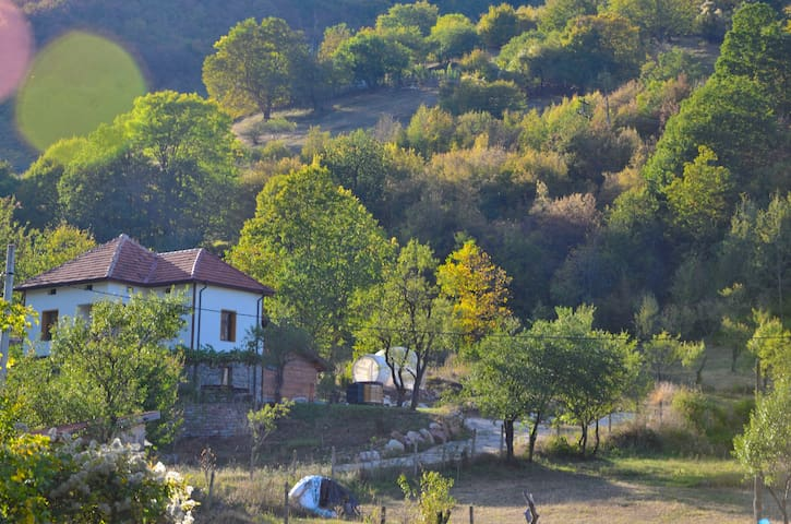 Sineva - Nature lodge