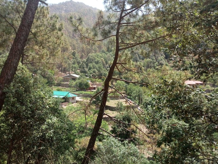 The Barkat Cottages: At home with Nature