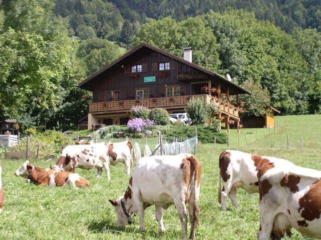 Chalet Savoyard dans le Massif des Bauges - Jarsy - 家庭式旅館