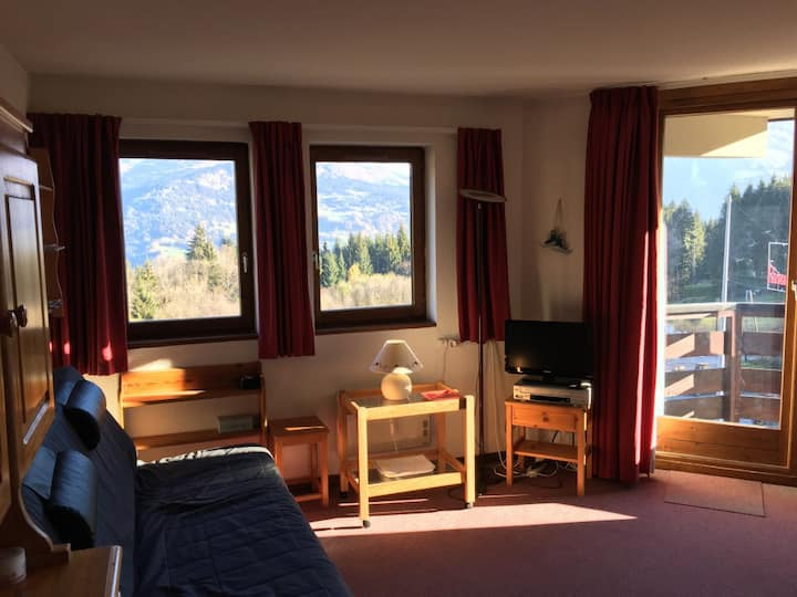 Apt 30sqm for 6 p. access to ski slopes by foot