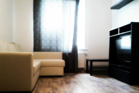Уютная комфортабельная квартира на Обском море - Novosibirsk - Lägenhet