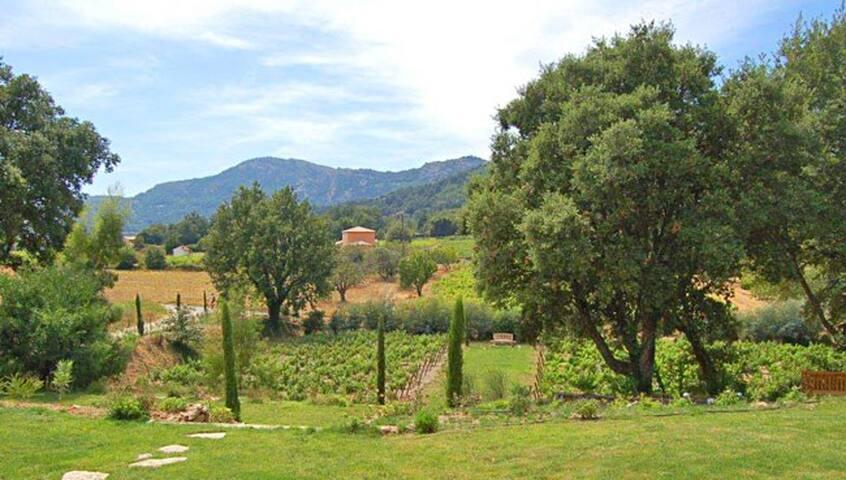 Lovely house in a quiet valley - La Garde-Freinet - Cabaña