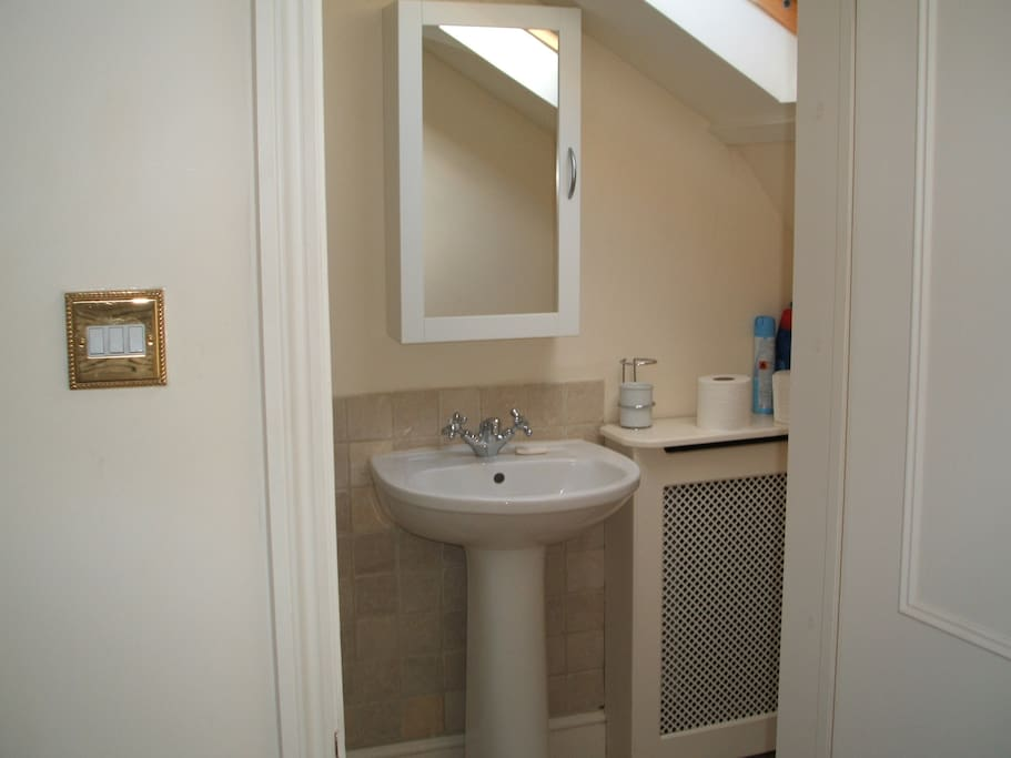 Ensuite bathroom with shower and WC