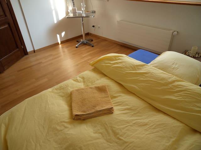 2 sunlit bedrooms on 2 floors - Basel - Daire
