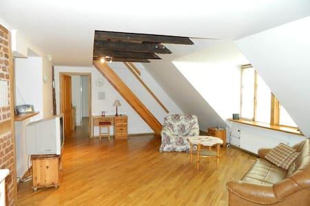 Dom square spacious apartment - Riga - Wohnung