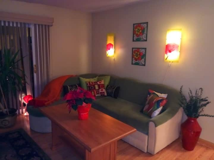 Lovely apartment in Schaumburg