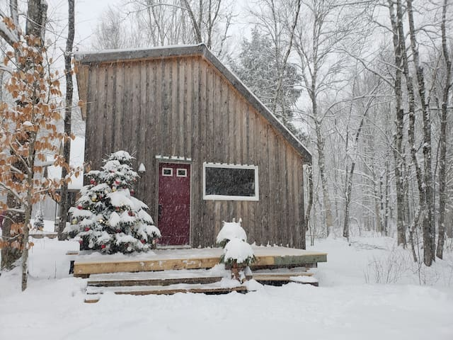 Cozy cabin 2 minutes from ski hill