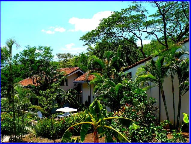Tamarindo Blue 10 - Tamarindo - Apartment