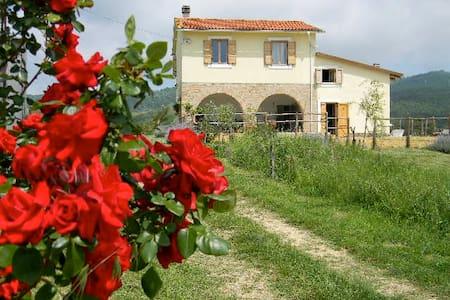 Genuine country/city holiday Lazio - Sasso - Dům