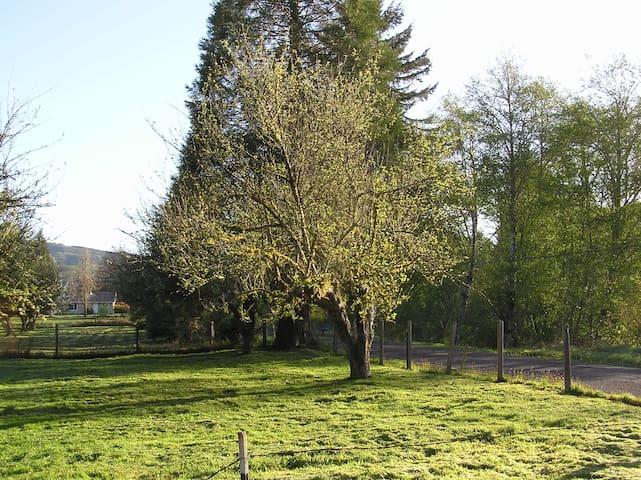 Robin's Zen-Den - Cathlamet - Hus