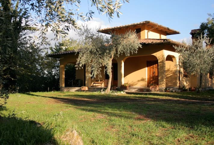 lovely house on top of lovely hill - Cetona - House