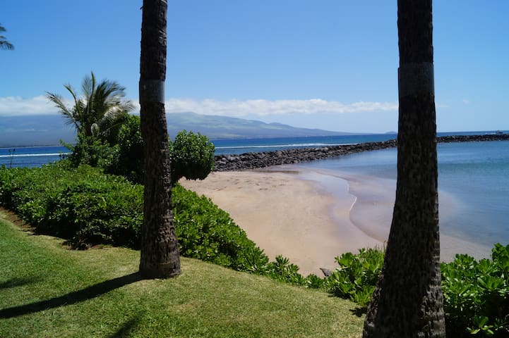 OCEANFRONT GET-A-WAY - Maalaea - Apartment