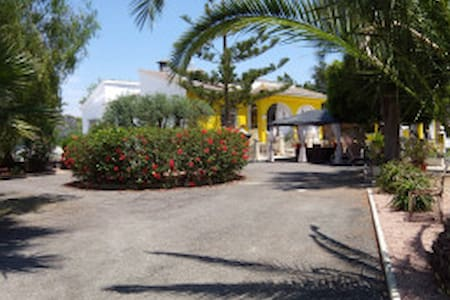 casa-mimosa. A home away from home - Elche - Bed & Breakfast