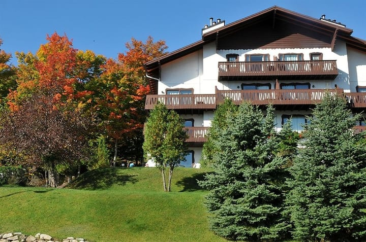 Best view - Best Value ! 1bdrm on Lake Tremblant