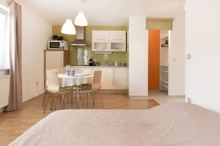Center Studio for Couples or Young - Ljubljana - Apartment