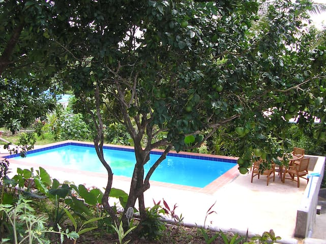 Beautiful pool and deck area.surrounded by tropical gardens.