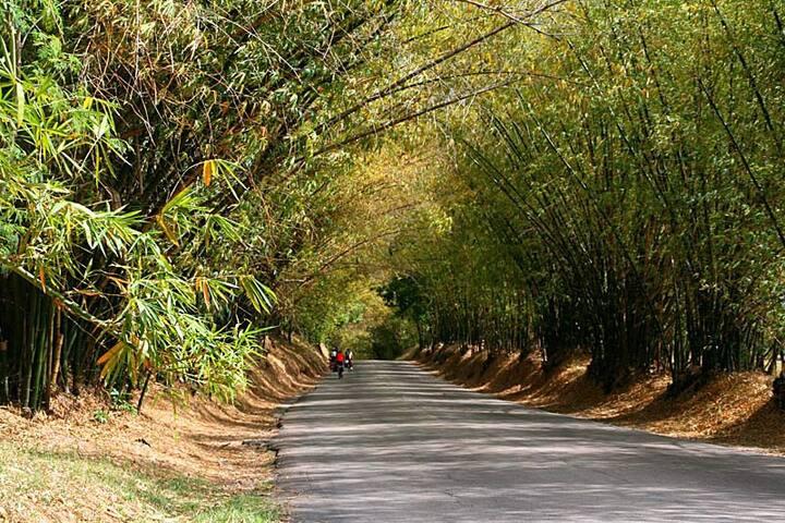 Jamaica Countryside Getaway