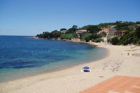 studio bord de mer en Corse - Daire