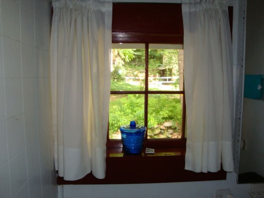 bathroom window has view of horse barn. the lodge has over 1000 panes of glass! but wow, how charming!
