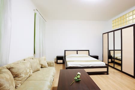 The apartment has everything for a comfortable stay for dwo (or family of four) persons - a double bed, a large sofa wardrobe, and dining table. The bathroom has a large shower, a bidet, liquid soap, towels, bed linen, kitchenware, etc.