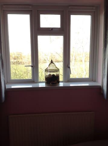 Room in a quiet Earlsfield flat - London - Flat