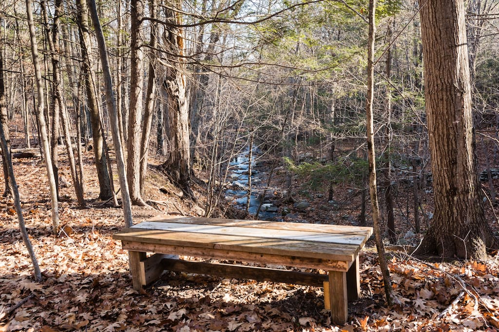 Bench set in the woods to hear the waterfall and stream