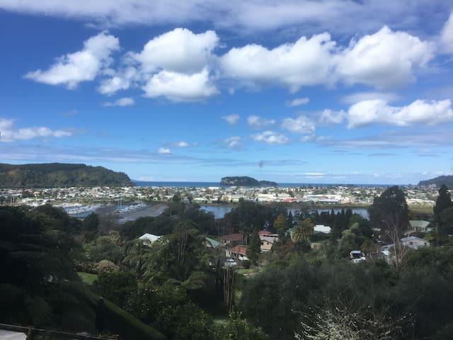 Whangamata Island View - Whangamata - Lägenhet