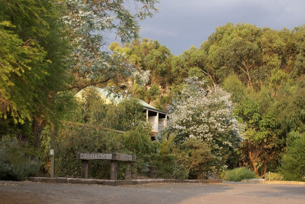 Daysy Hill Country Cottages Suites