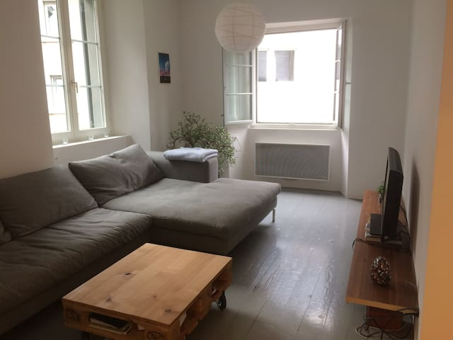 Charmante Wohnung im Zentrum von Baden - Baden - Wohnung