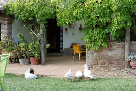 Casa del abuelo, 2 people. - El Pedroso - Hus