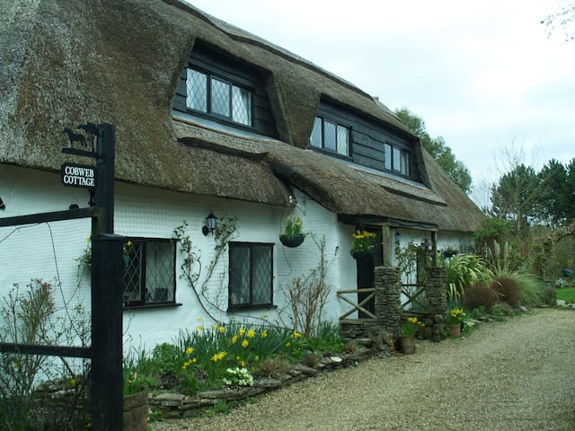 Cobweb Cottage Retreat, New Forest