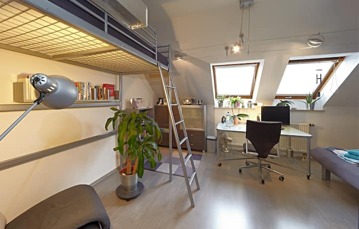 Mini Loft in Periphery of Nuremberg