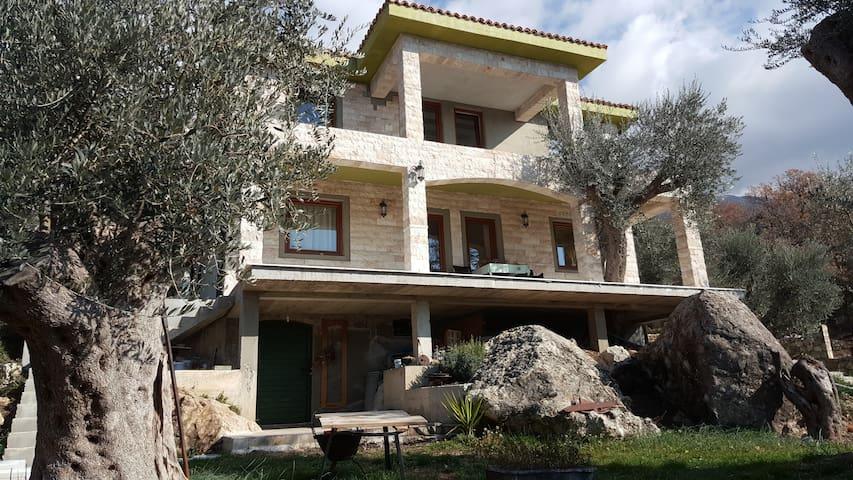 guest house Oliva - Kaluđerac - Villa