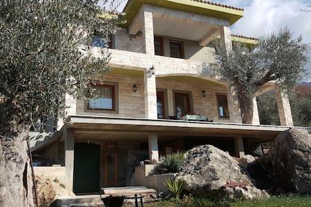guest house Oliva - Kaluđerac