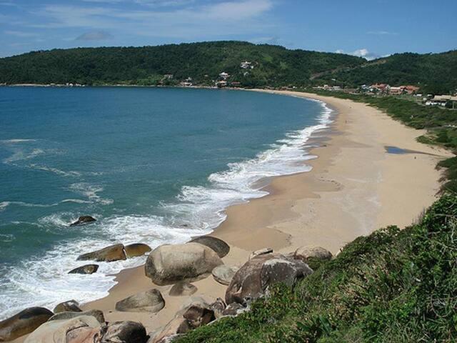 Casa de praia repleta de mata atlântica! - Balneário Camboriú - Casa